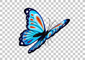 蝴蝶T,衬衫,蓝色和红色蝴蝶,蓝色和多彩多姿的蝴蝶PNG剪贴画蓝色,图片