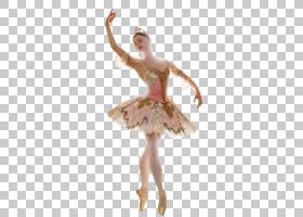 莫斯科大剧院,莫斯科睡美人芭蕾舞蹈海报,芭蕾舞女演员PNG剪贴画图片