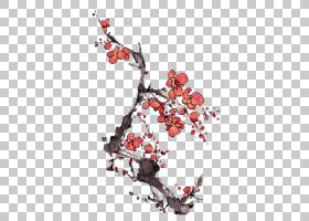 梅花中国画水墨画工笔,红梅花PNG剪贴画水彩画,心,科,树枝,鸡大腿