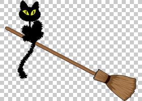 万圣节黑猫,万圣节黑猫扫帚材料PNG剪贴画节日元素,黑色白色,生日