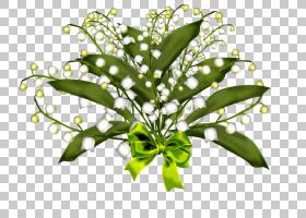 动画铃兰,万圣节元素PNG剪贴画叶,分支,针,植物茎,卡通,花卉,luci