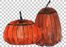 南瓜绘线艺术南瓜,南瓜PNG剪贴画橙色,蔬菜,南瓜,冬季壁球,线条艺
