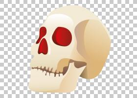 头骨万圣节,万圣节头骨,人类头骨插图PNG剪贴画万圣节快乐,摄影,