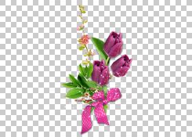 3月8日国际妇女节,其他PNG剪贴画杂项,插花,摄影,其他,花,洋红色,