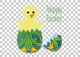 复活节兔子,复活节草PNG剪贴画基督教,假期,复活节彩蛋,鸟,免版税