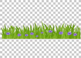 花草坪,草PNG剪贴画紫色,蓝色,电脑壁纸,草,植物茎,桌面壁纸,野花