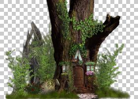 高清电视高清视频屋,神秘屋,绿色和棕色树屋图PNG剪贴画房子,草,d图片