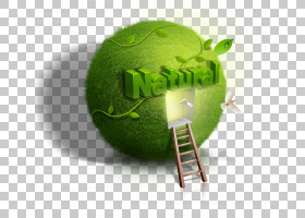 海报自然生态,绿色地球窗口PNG剪贴画家具,格兰尼史密斯,电脑壁纸
