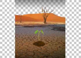 干旱自然灾害水荒漠化,缺乏水资源PNG剪贴画景观,干燥,水玻璃,水
