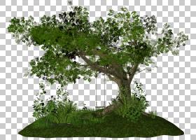 PhotoScape树,灌木丛PNG剪贴画分支,草,花,封装的PostScript,计算