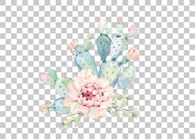 仙人掌水彩画多肉植物欧几里得,手绘水彩花卉,绿色植物仙人掌,绿