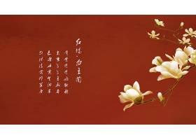 红色诗句中式艺术工笔花鸟背景插画设计