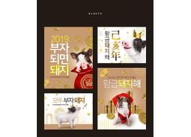韩式猪年发财恭贺新年主题创意标签海报设计