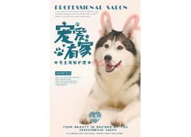 宠物店猫咪狗狗宠物美容店铺促销海报