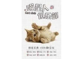 喵星人俱乐部猫咪狗狗宠物店铺通用海报