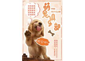 可爱宠物店猫咪狗狗宠物美容店铺促销海报
