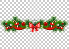 糖果手杖圣诞节晚餐食物,假日食物的PNG clipart食品,电脑壁纸,草