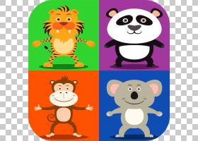 伯尔尼山犬考拉熊雪貂PNG剪贴画哺乳动物,动物,摄影,脊椎动物,野图片