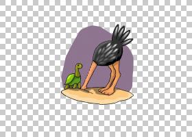 鸭子常见的鸵鸟鸟,鸵鸟埋葬PNG剪贴画动物,鸡,脊椎动物,动物群,卡图片