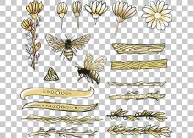 蜜蜂绘图,蜜蜂PNG剪贴画水彩绘画,刷脚蝴蝶,昆虫,动物群,生日快乐