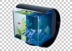 暹罗斗鱼水族馆Fishkeeping Goldfish Tetra,betta PNG剪贴画动物