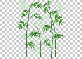 竹子,手绘竹子,绿竹PNG剪贴画水彩画,叶,海报,分支,草,植物茎,棕