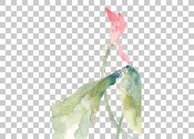 水彩绘画艺术创意工作插图,莲花PNG剪贴画叶,摄影,自然,植物茎,插