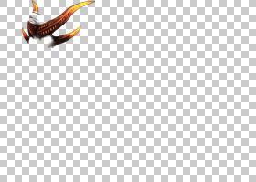 昆虫桌面喙线字体恶魔角PNG剪贴画动物,计算机,橙色,计算机壁纸,