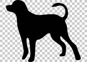狗猫宠物动物损失,渐进PNG剪贴画哺乳动物,猫像哺乳动物,动物,食