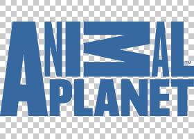 动物星球高清电视电视频道探索频道,地理PNG剪贴画杂项,电视,蓝色图片