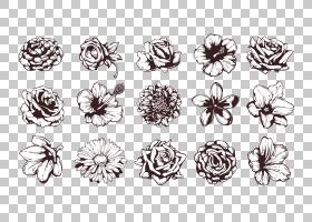 手绘PNG剪贴画对称性,单色,手绘,花卉,材料,艺术,树,有机体,线条