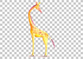 纸结婚请柬水彩画摄影插图长颈鹿PNG剪贴画哺乳动物,儿童,动物,食图片
