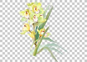 水彩画花卉绘画艺术,水彩PNG剪贴画插花,剪纸,植物茎,花,绘画,春