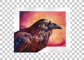 水彩画西方艺术周Watermedia,绘画PNG剪贴画水彩画,动物群,艺术展