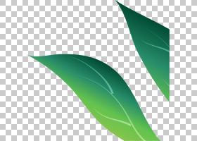 绿叶多彩运行PNG剪贴画叶,草,艺术,绿色,行,植物,2194417图片