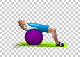 健身球普拉提紧缩直肌腹肌瑜伽球PNG剪贴画杂项,体育健身,其他,手