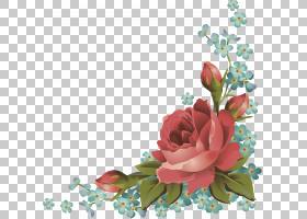 玫瑰,花卉PNG剪贴画插花,花卉,剪纸,花卉,图片框架,玫瑰订单,鲜花