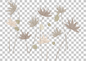 插图,墨水莲花PNG剪贴画叶,分支机构,生日快乐矢量图像,植物茎,插图片
