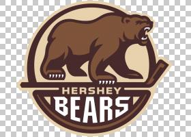 Hershey Bears巨人中心美国冰球联盟Charlotte Checkers Lehigh V