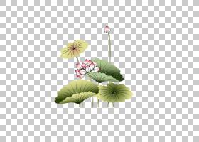 iPad水墨画,荷叶莲花PNG剪贴画叶,枫叶,摄影,植物茎,一年生植物,