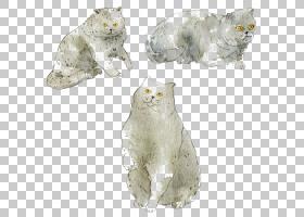 猫须水彩绘画艺术插画,水彩猫PNG剪贴画水彩叶子,画,动物,猫像哺