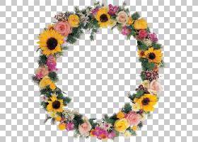 切花框架花艺设计花圈,花卉框架PNG剪贴画插花,装饰,人造花,花卉,图片