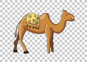骆驼旅行骆驼旅行PNG Clipart马,哺乳动物,动物,生日快乐矢量图像图片
