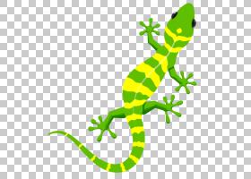 壁虎蜥蜴绘画艺术动物,颜色,动物区系,陆生动物,绘画,油漆,两栖动