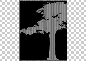树摄影图前景树PNG剪贴画叶,摄影,分支,单色,花,剪影,模板,植物,