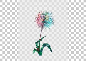 花束画,花卉设计,花束,插花,切花,花,植物茎,花瓶,花盆,花卉,花瓣图片