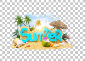 旅游夏日海滩,字体,文本,食物,酒店,夏天,旅行,夏季4 2,休假,海滩