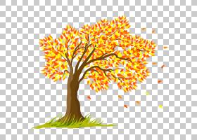 夏花背景,商品,细枝,植物茎,线路,植物,植物群,叶,分支,花,木本植