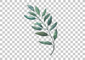 绿叶水彩画,细枝,植物茎,分支,树,植物,绘图,叶,水彩画,