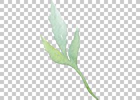 绿叶水彩画,草,植物,植物茎,橙色,颜色,画笔,免费,油漆,绿色,绘画
